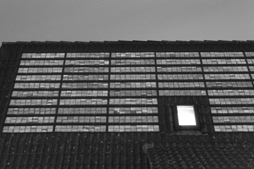 Elektrolumineszenzaufnahme einer Braas Indach Photovoltaikanlage