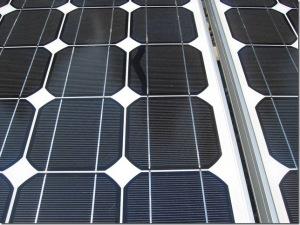 Schneckenspuren Photovoltaik: Dieses Bild zeigt Schneckenspuren auf einer Solarzelle (snailtrails)