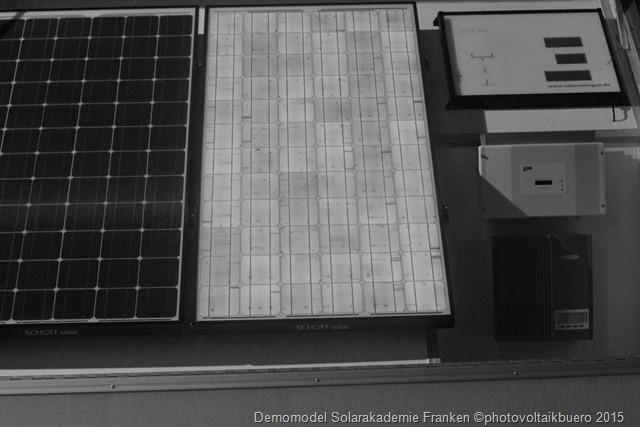 Elektrolumineszenzaufnahme eines monokristallienen Solarmoduls