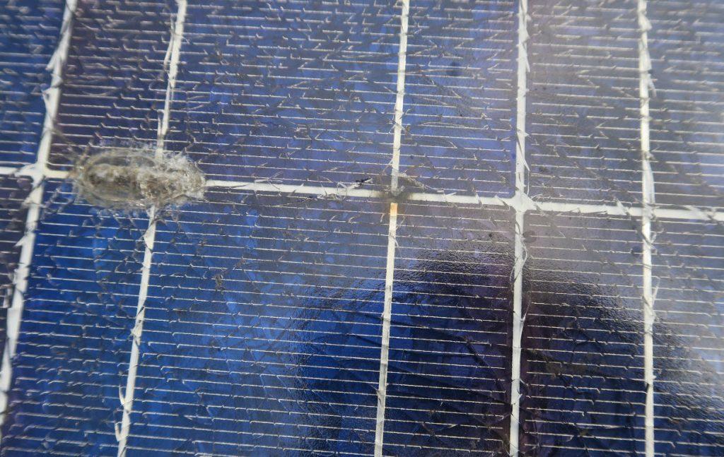 abgerissene Zellverbinder, die zu einem Lichtbogen geführt haben